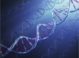 SPORTDUIVEN EN GENETICA OVER DNA, OUDERSCHAPSBEPALINGEN EN SNELHEIDSGENEN
