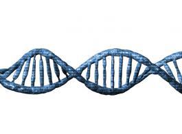DNA testen van de hoogste kwaliteit - stricte staalname procedure